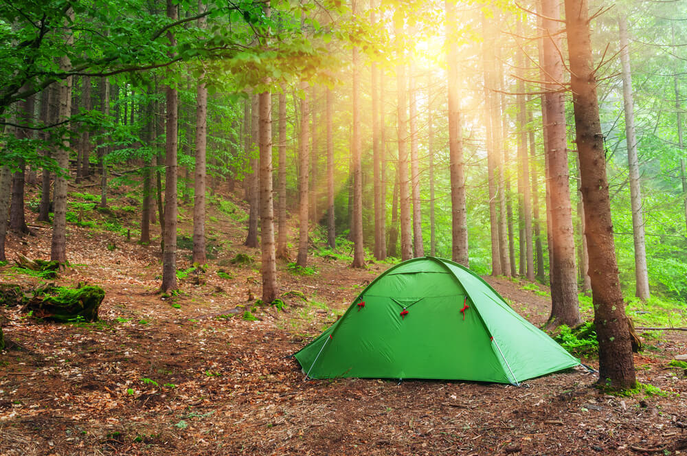 ひとりキャンプで食って寝るの7話は恋愛モード!?黒川芽以と三浦貴大のキャンプの夜に・・・